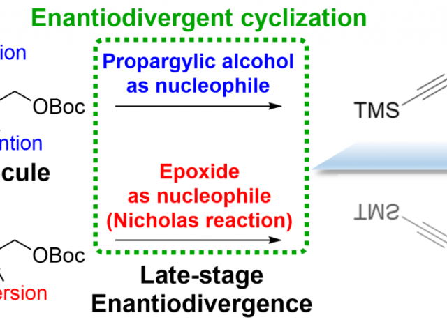 Enantiodivergent cyclization by inversion of the reactivity inambiphilic molecules