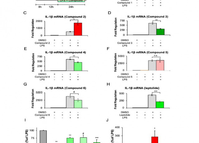 Modulation of Glial Responses by Furanocembranolides: Leptolide Diminishes Microglial Inflammation in Vitro and Ameliorates Gliosis In Vivo in a Mouse Model of Obesity and Insulin Resistance