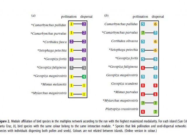 Species functional traits and abundance as drivers of multiplex ecological networks: first empirical quantification of inter-layer edge weights